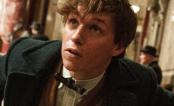 """J.K. Rowling lança contos inéditos de """"Animais Fantásticos e Onde Habitam""""!"""