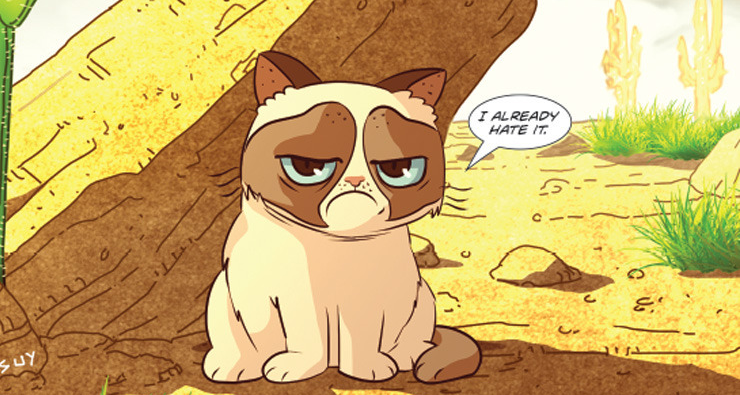 Mais famosos que qualquer gato, Grumpy Cat e Pokey ganham história em quadrinhos